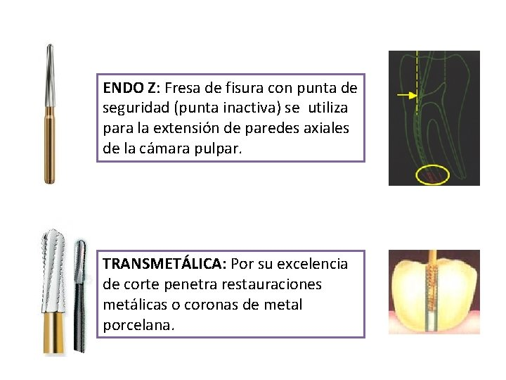 ENDO Z: Fresa de fisura con punta de seguridad (punta inactiva) se utiliza para