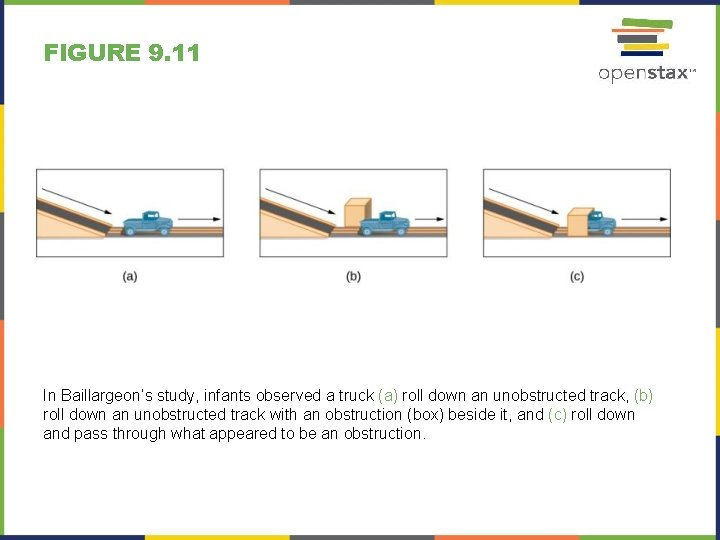 FIGURE 9. 11 In Baillargeon's study, infants observed a truck (a) roll down an