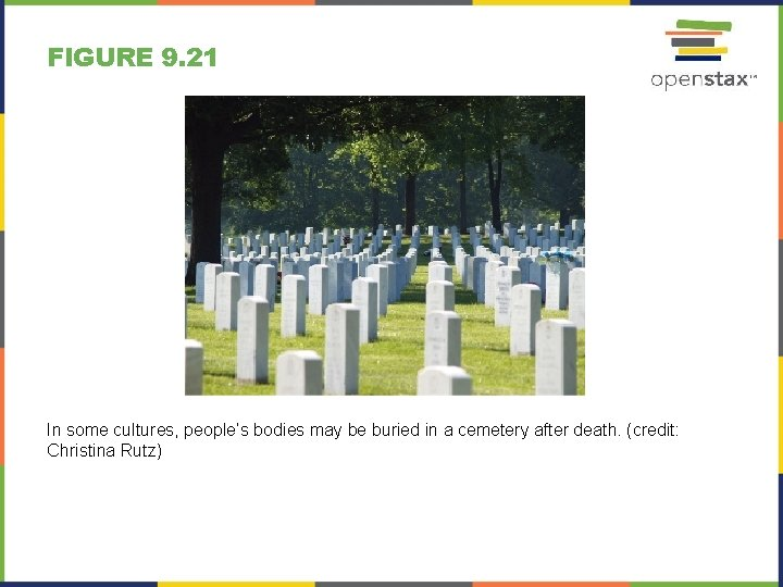 FIGURE 9. 21 In some cultures, people's bodies may be buried in a cemetery