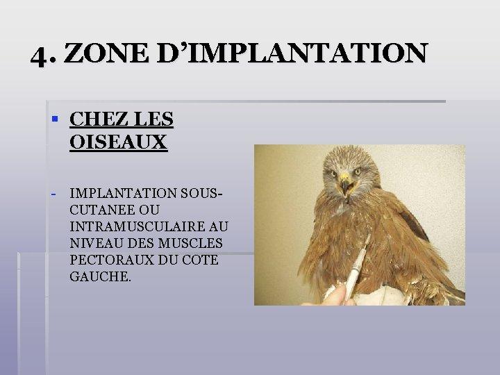 4. ZONE D'IMPLANTATION § CHEZ LES OISEAUX - IMPLANTATION SOUSCUTANEE OU INTRAMUSCULAIRE AU NIVEAU
