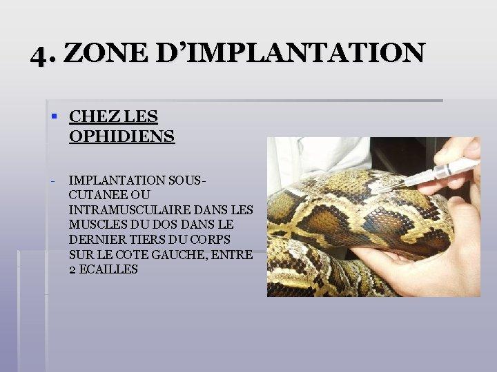 4. ZONE D'IMPLANTATION § CHEZ LES OPHIDIENS - IMPLANTATION SOUSCUTANEE OU INTRAMUSCULAIRE DANS LES