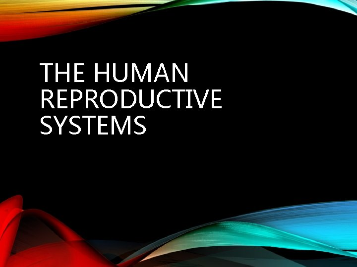 THE HUMAN REPRODUCTIVE SYSTEMS