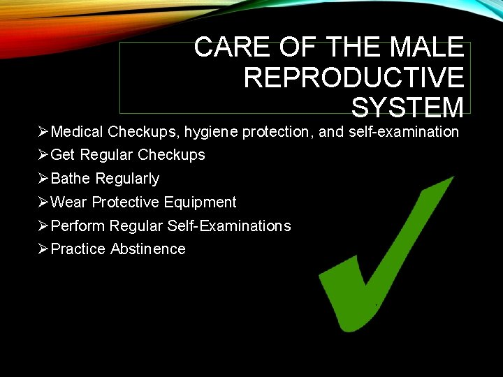 CARE OF THE MALE REPRODUCTIVE SYSTEM ØMedical Checkups, hygiene protection, and self-examination ØGet Regular
