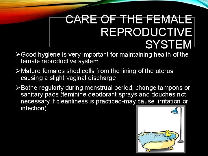 CARE OF THE FEMALE REPRODUCTIVE SYSTEM ØGood hygiene is very important for maintaining health