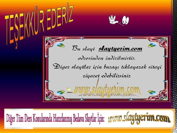 www. slaytyerim. com