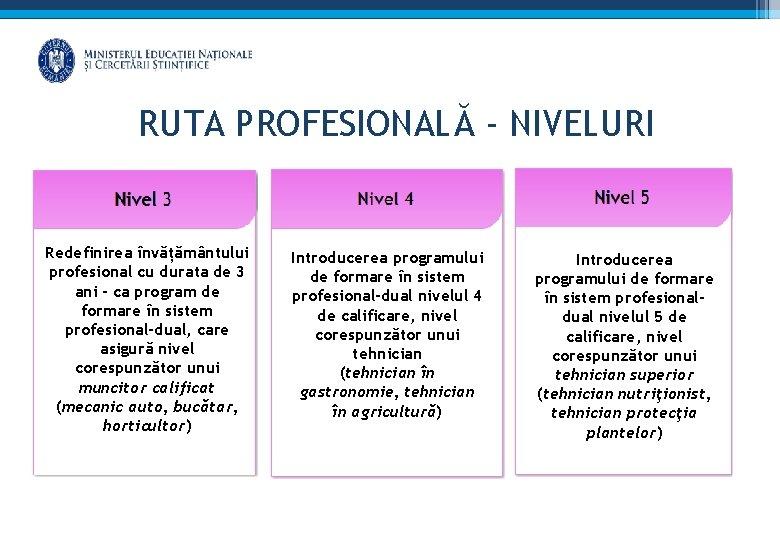 RUTA PROFESIONALĂ - NIVELURI Redefinirea învățământului profesional cu durata de 3 ani - ca