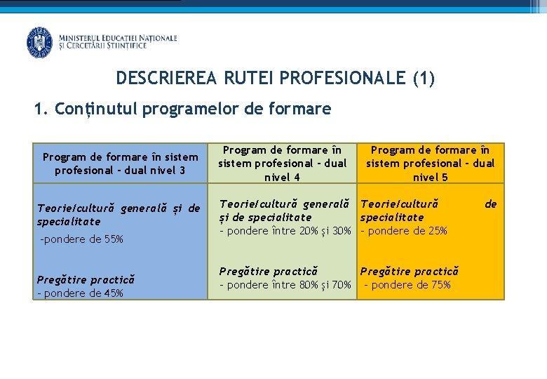DESCRIEREA RUTEI PROFESIONALE (1) 1. Conținutul programelor de formare Program de formare în sistem