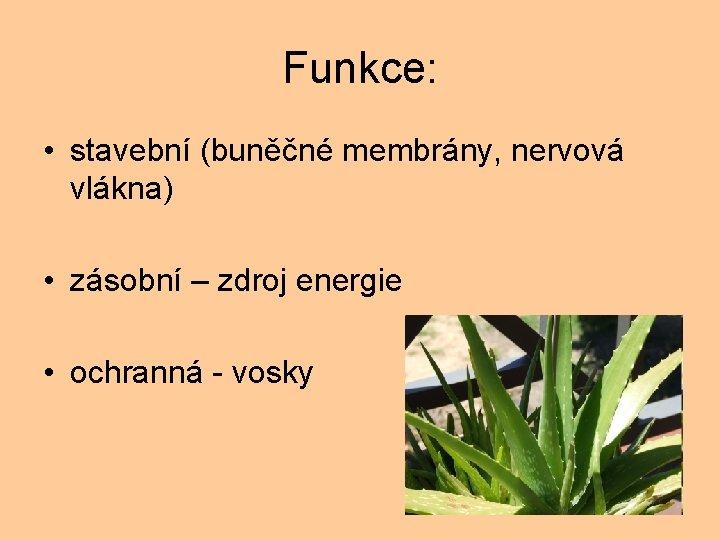 Funkce: • stavební (buněčné membrány, nervová vlákna) • zásobní – zdroj energie • ochranná
