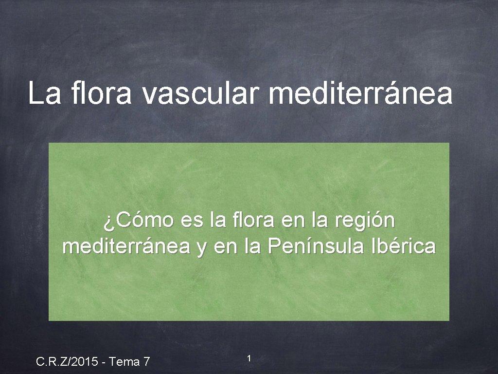 La flora vascular mediterránea ¿Cómo es la flora en la región mediterránea y en
