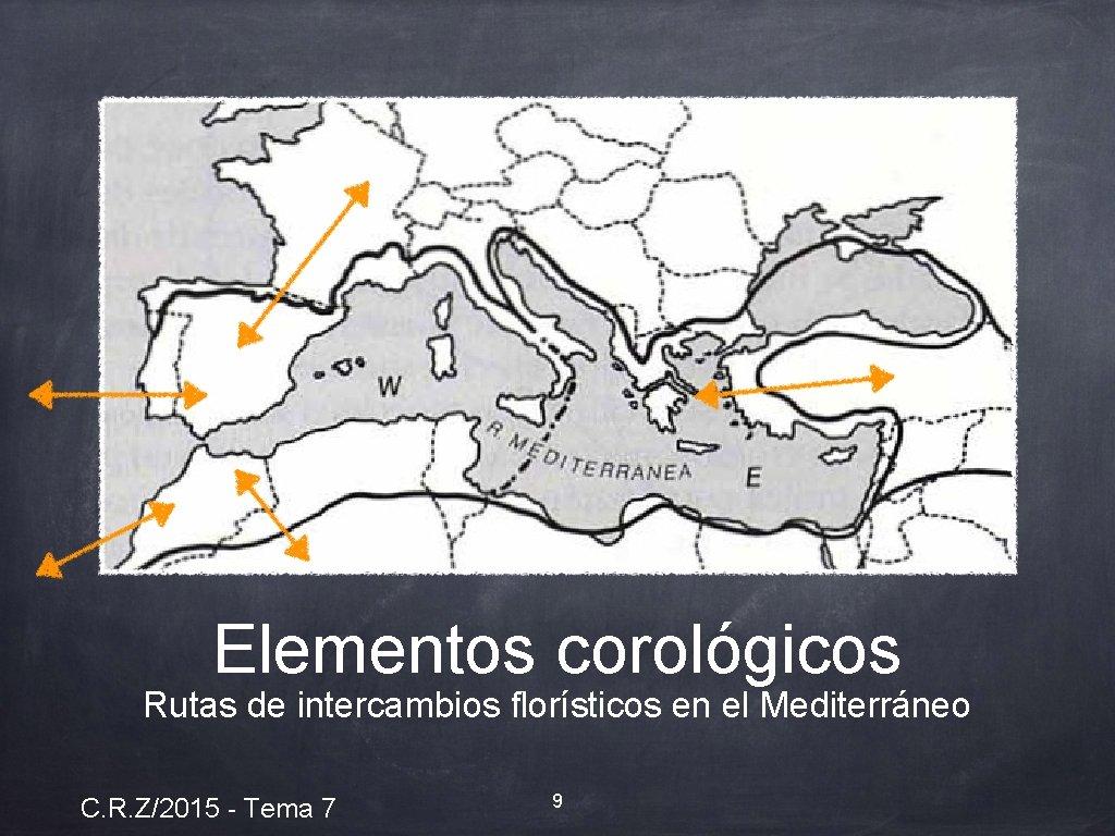 Elementos corológicos Rutas de intercambios florísticos en el Mediterráneo C. R. Z/2015 - Tema