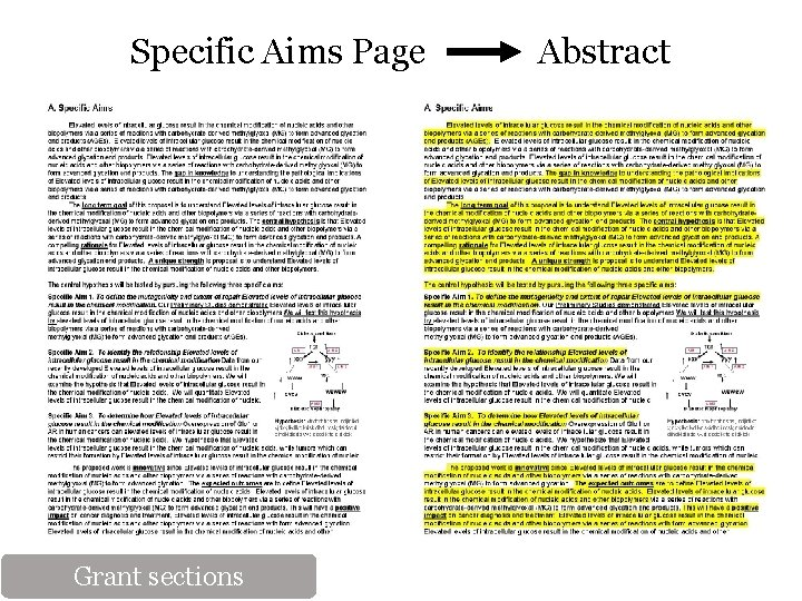 Specific Aims Page Abstract Grant sections