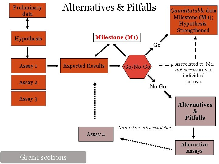 Preliminary data Alternatives & Pitfalls Quantitatable data Milestone (M 1); Hypothesis Strengthened Milestone (M