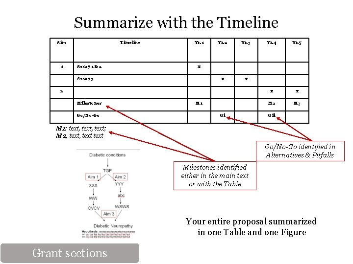Summarize with the Timeline Aim 1 Timeline Assay 1 & 2 Yr. 1 Yr.