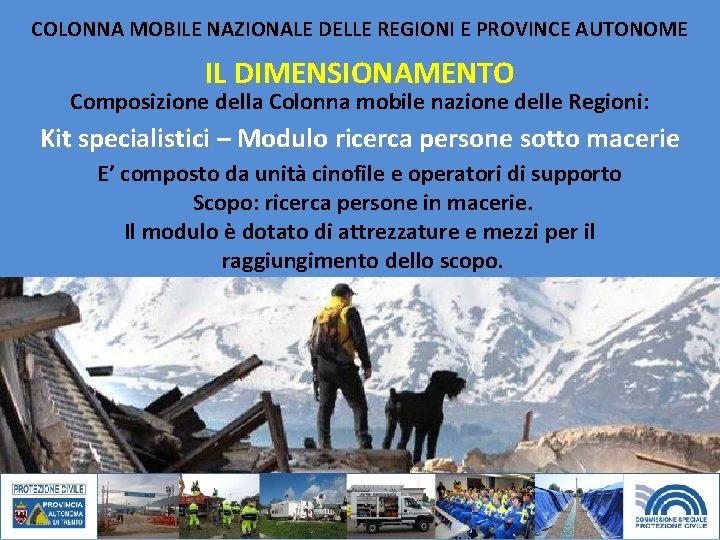 COLONNA MOBILE NAZIONALE DELLE REGIONI E PROVINCE AUTONOME IL DIMENSIONAMENTO Composizione della Colonna mobile