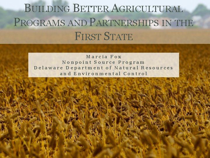 BUILDING BETTER AGRICULTURAL PROGRAMS AND PARTNERSHIPS IN THE FIRST STATE Marcia Fox Nonpoint Source