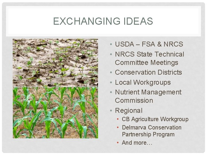 EXCHANGING IDEAS • USDA – FSA & NRCS • NRCS State Technical Committee Meetings