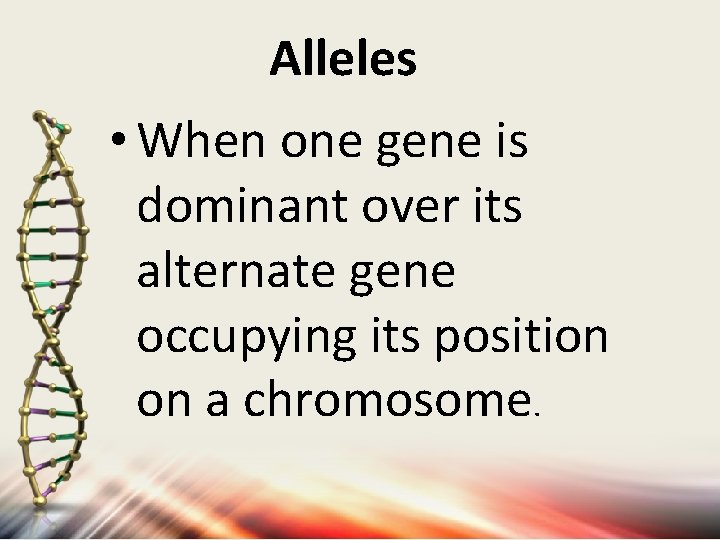 Alleles • When one gene is dominant over its alternate gene occupying its position