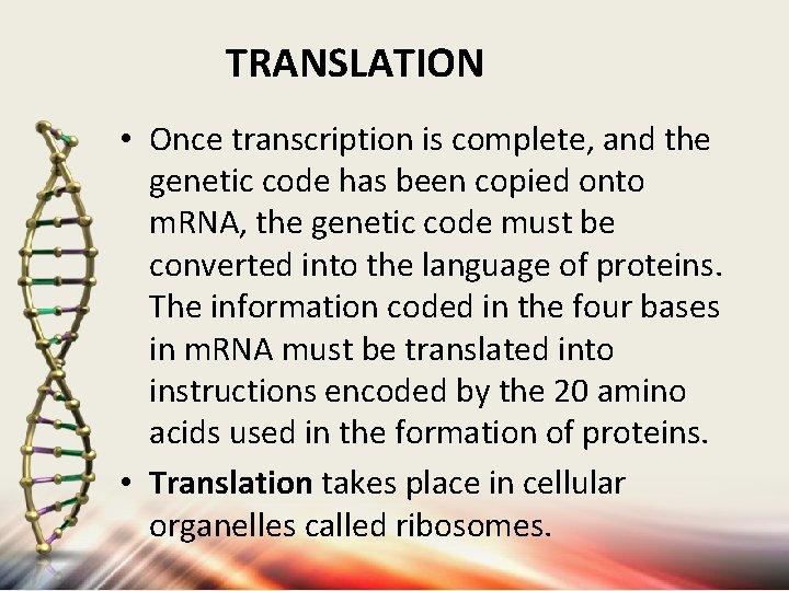 TRANSLATION • Once transcription is complete, and the genetic code has been copied onto