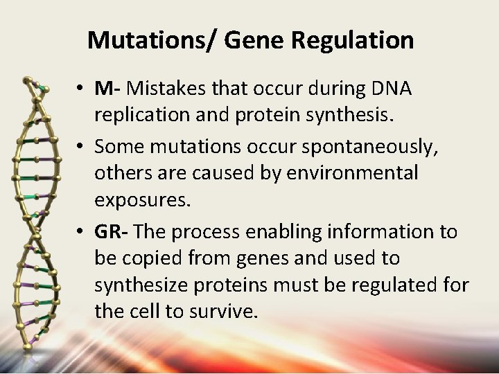 Mutations/ Gene Regulation • M- Mistakes that occur during DNA replication and protein synthesis.