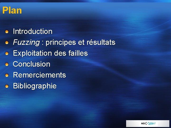 Plan Introduction Fuzzing : principes et résultats Exploitation des failles Conclusion Remerciements Bibliographie