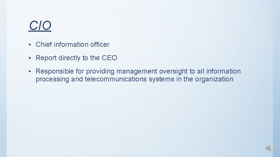 CIO • Chief information officer • Report directly to the CEO • Responsible for