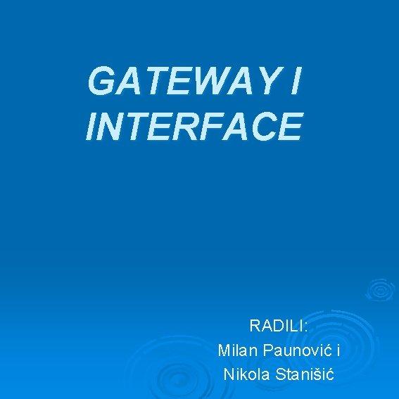 GATEWAY I INTERFACE RADILI: Milan Paunović i Nikola Stanišić