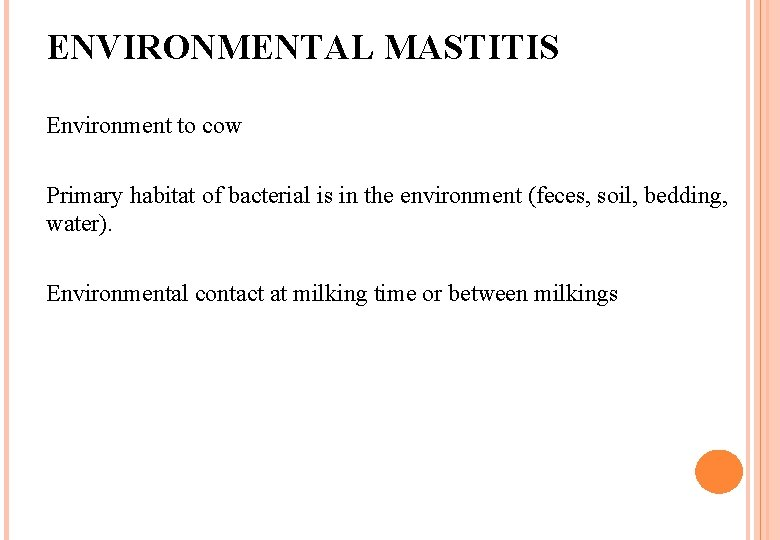 ENVIRONMENTAL MASTITIS Environment to cow Primary habitat of bacterial is in the environment (feces,