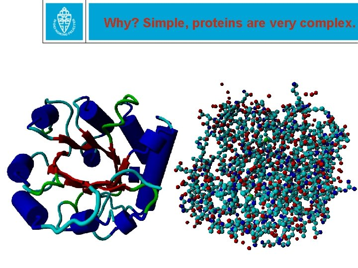 Why? Simple, proteins are very complex.
