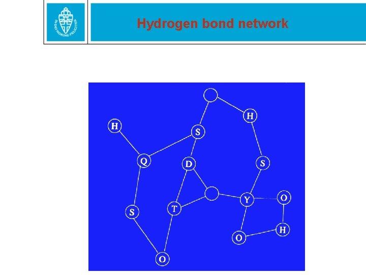 Hydrogen bond network