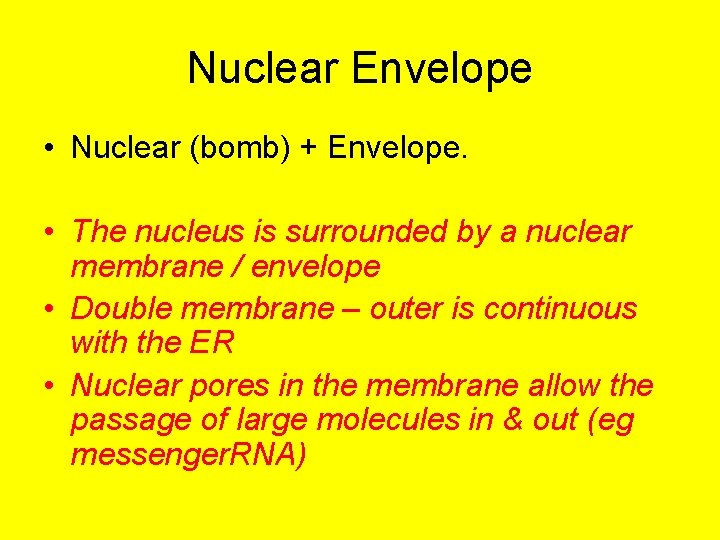 Nuclear Envelope • Nuclear (bomb) + Envelope. • The nucleus is surrounded by a