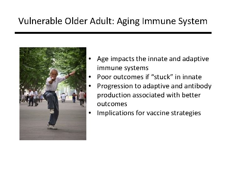 Vulnerable Older Adult: Aging Immune System • Age impacts the innate and adaptive immune