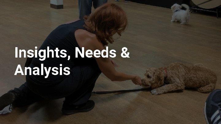 Insights, Needs & Analysis
