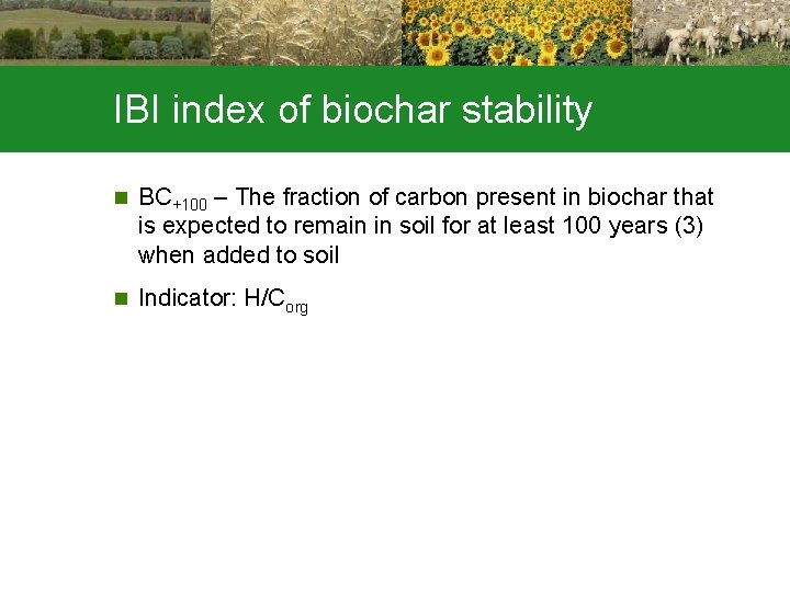 IBI index of biochar stability n BC+100 – The fraction of carbon present in