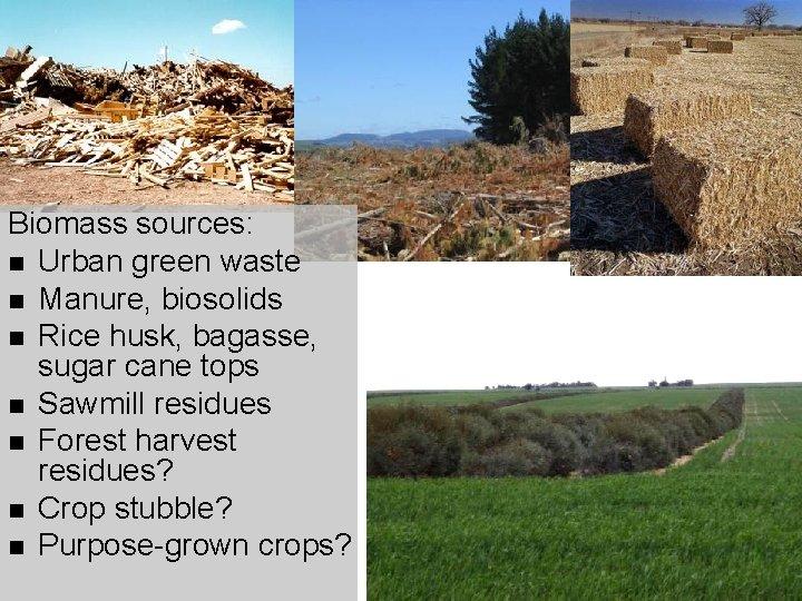 Biomass sources: n Urban green waste n Manure, biosolids n Rice husk, bagasse, sugar