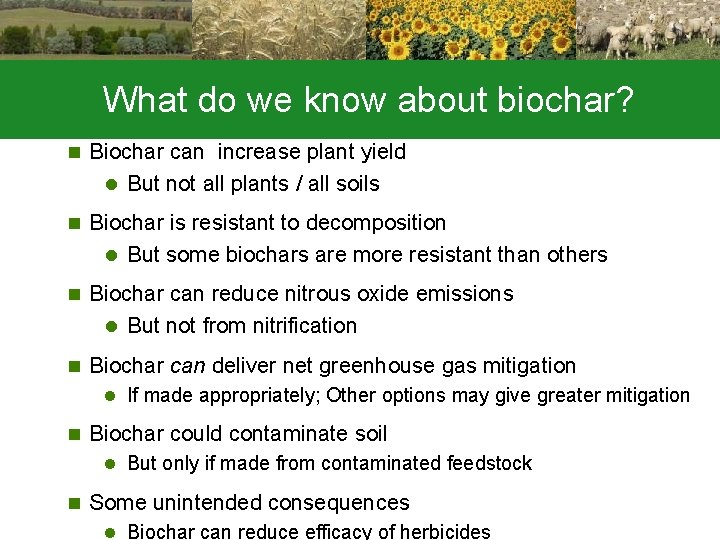 What do we know about biochar? n Biochar can increase plant yield l But