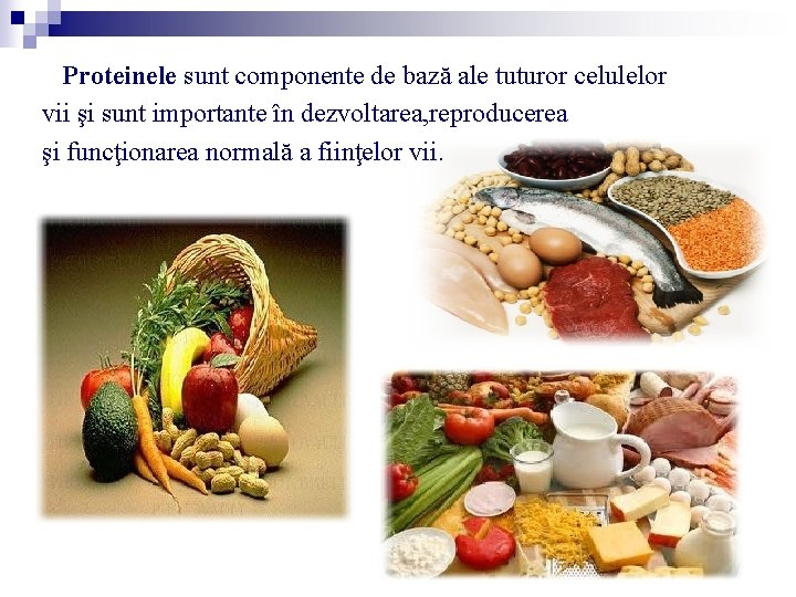 Proteinele sunt componente de bază ale tuturor celulelor vii şi sunt importante în dezvoltarea,