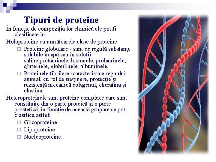 Tipuri de proteine În funcţie de compoziţia lor chimică ele pot fi clasificate în: