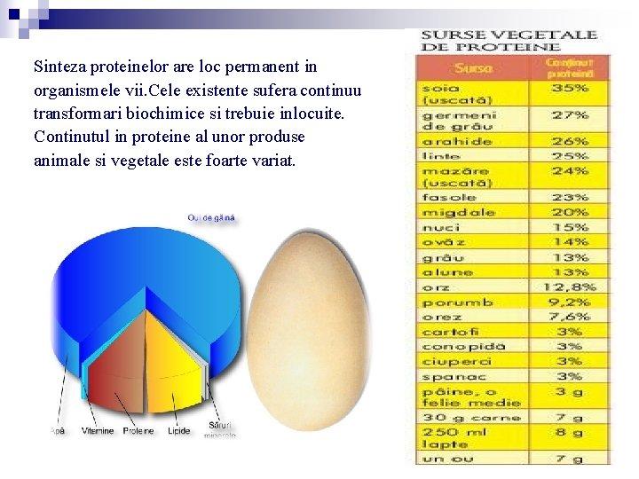 Sinteza proteinelor are loc permanent in organismele vii. Cele existente sufera continuu transformari biochimice