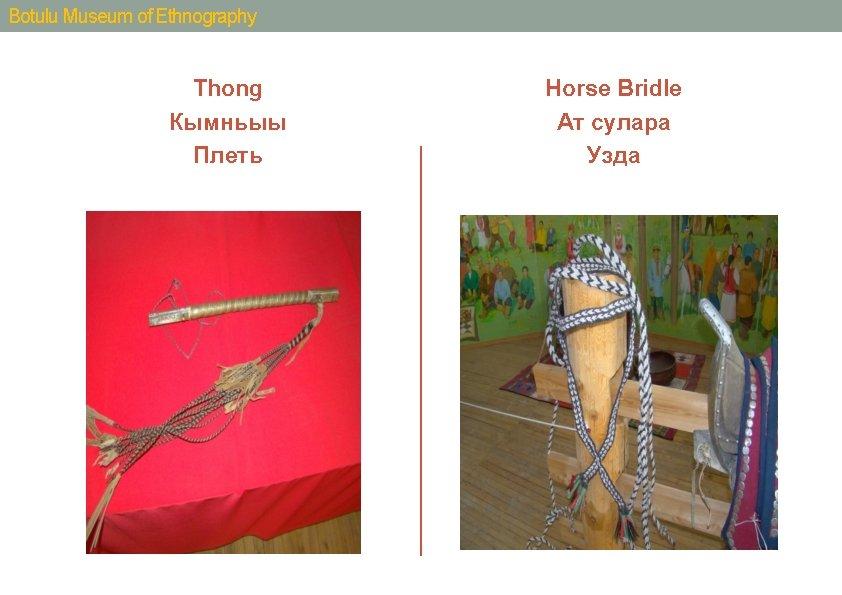 Botulu Museum of Ethnography Thong Кымньыы Плеть Horse Bridle Ат сулара Узда
