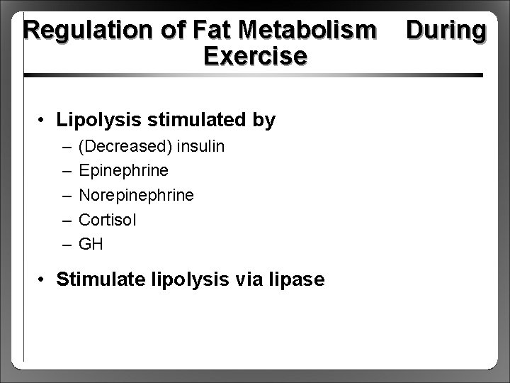 Regulation of Fat Metabolism Exercise • Lipolysis stimulated by – – – (Decreased) insulin