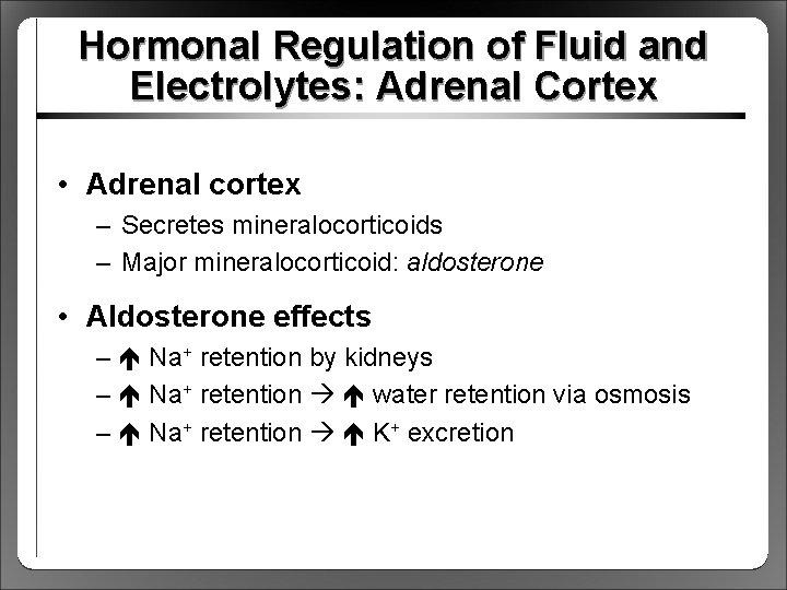 Hormonal Regulation of Fluid and Electrolytes: Adrenal Cortex • Adrenal cortex – Secretes mineralocorticoids