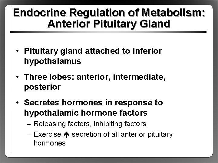 Endocrine Regulation of Metabolism: Anterior Pituitary Gland • Pituitary gland attached to inferior hypothalamus