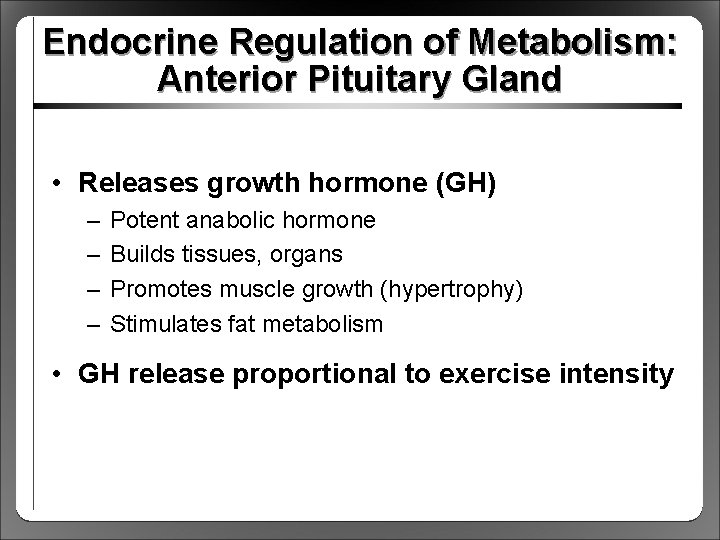 Endocrine Regulation of Metabolism: Anterior Pituitary Gland • Releases growth hormone (GH) – –