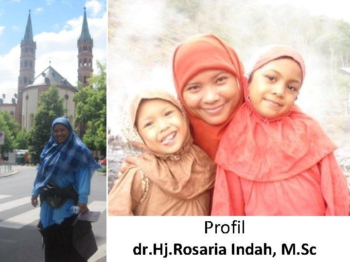 Profil dr. Hj. Rosaria Indah, M. Sc
