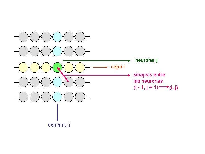 neurona ij capa i sinapsis entre las neuronas (i - 1, j + 1)