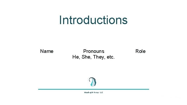 Introductions Name Pronouns He, She, They, etc. Mae. Bright Group, LLC Role