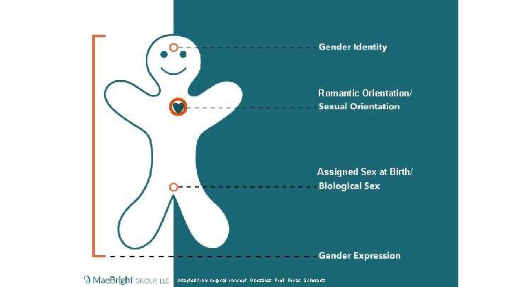 Romantic Orientation/ Assigned Sex at Birth/ Mae. Bright Group, LLC Adapted from original concept: