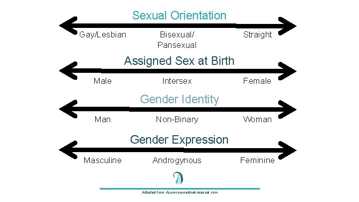 Sexual Orientation Gay/Lesbian Bisexual/ Pansexual Straight Assigned Sex at Birth Male Intersex Female Gender