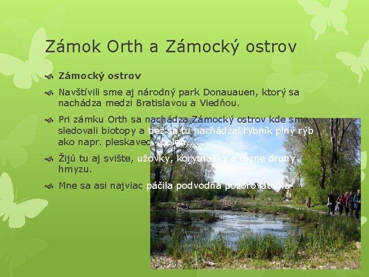 Zámok Orth a Zámocký ostrov Navštívili sme aj národný park Donauauen, ktorý sa nachádza