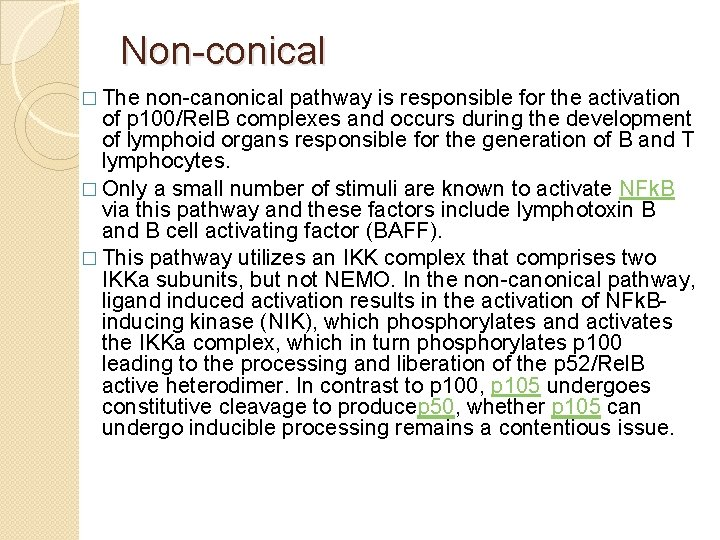 Non-conical � The non-canonical pathway is responsible for the activation of p 100/Rel. B